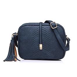 Realer Petits sacs en cuir PU Sacs Crossbody pour femmes avec gland et sangle réglable