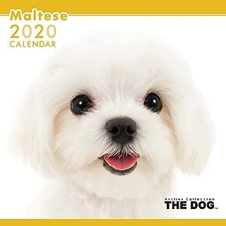 maltese calendar 2019