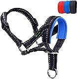 ILEPARK Collare per Testa di Cane con Cintura Riflettente, Cavezza da Testa per Cane, Regolabile E Facilmente Controllabile. (L,Blu)