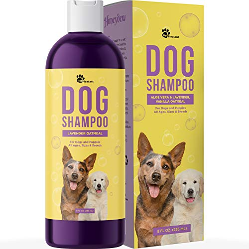 Dog Shampoo for Smelly Dogs - Refreshing Colloidal Oatmeal Dog Shampoo for Dry Skin and Cleansing Dog Bath Soap - Moisturizing Dog Shampoo Oatmeal Lavender Formula for Great Smelling Dog Wash
