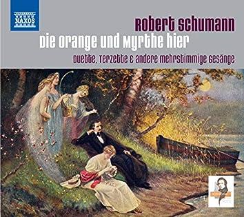 Schumann: Die Orange und Myrthe hier
