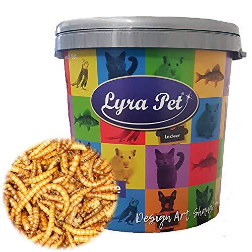 Lyra Pet® 5 kg Mehlwürmer 5000 g getrocknet für Fische Reptilien Nager + 30 L Tonne