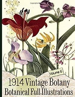 1914 Vintage Botany Botanical Full Illustrations (Floral Ephemera Series 6)