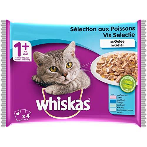 Whiskas Sélection aux Poissons en Gelée – Nourriture humide pour chat adulte – Alimentation complète en sachets fraîcheur – 52 x 100g
