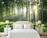 3D Fotomurales Papel pintado Paisaje de sol y árboles verdes. 400(W)X280(H) cm Mural Salón Dormitorio Despacho Pasillo Decoración murales decoración de paredes moderna