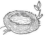 Nid à plumes–Loyauté récompense Tampon–11x 11