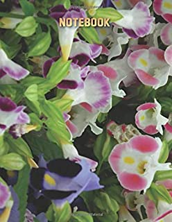 Torenia Wishbone Journal Multipurpose Notebook - Large (8.5 x 11 Composition Book, Diary) Cute Flowers Cover