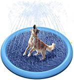 Tappetino Spray in PVC per Animali Domestici Tappetino Spray per Piscina All'aperto in Estate