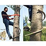 Elitte Professional Pole Climbing Spikes, Tree Climbing Tool Climbing Spurs, Includes one Pair of Gloves,600model