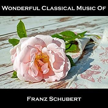 Wonderful Classical Music Of Franz Schubert