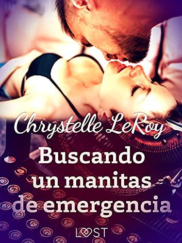 Buscando un manitas de emergencia de Chrystelle LeRoy