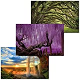 GREAT ART 3er Set XXL Poster – Mystische Natur –