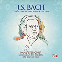 Violin Concerto a Minor