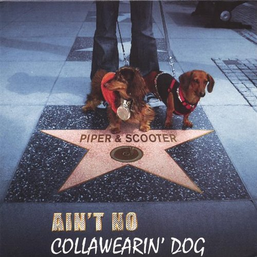 Ain't No Collawearin' Dog by Piper & Scooter