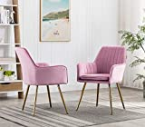 Artechworks Velvet Modern Living Dining Room Arm Chair Club Leisure Guest Lounge Bedroom Upholstered Chair with Gold Metal Legs,2Pcs Chairs Pink with a Litter Purple