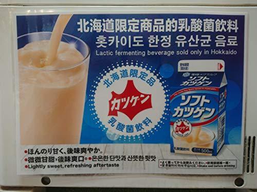 北海道限定 雪印メグミルク ソフトカツゲン