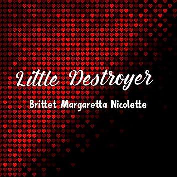 Little Destroyer