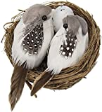 R H lifestyle Artificial Foam Feathered Mini Birds with Hay Nest & Eggs Ornaments, DIY Craft for Home Garden Lawn Decoration Party Accessories (9 x 7 x 5 cm) Pack of 1