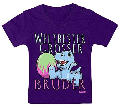Hariz - Camiseta para bebé con tarjeta de regalo para el mejor hermano del mundo (3-9 meses, 60-69 cm), color lila