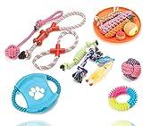 TK Gruppe Timo Klingler 15 TLG. Set Hundespielzeug - Spielzeug für div. Hunderassen/Hunde zur Beschäftigung & Selbstbeschäftigung - Spiel & Spaß mit dem Haustier