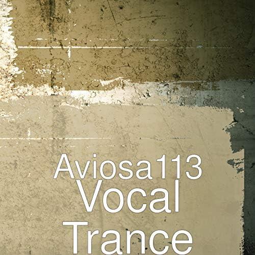 Aviosa113