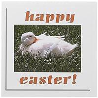 ビバリーターナーイースター写真–ホワイトDuck Happy Easter–グリーティングカード Set of 12 Greeting Cards