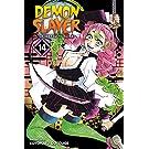Demon Slayer: Kimetsu no Yaiba, Vol. 14 (14)