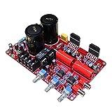 Baoblaze Scheda Amplificatore LM3886 NE5532 Potenza Pre Amplificazione Stereo Doppio Canale 68W + 68W