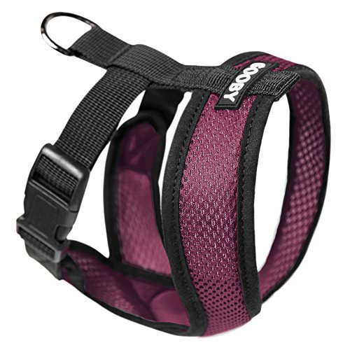 Gooby Choke Free Harness for small dogs