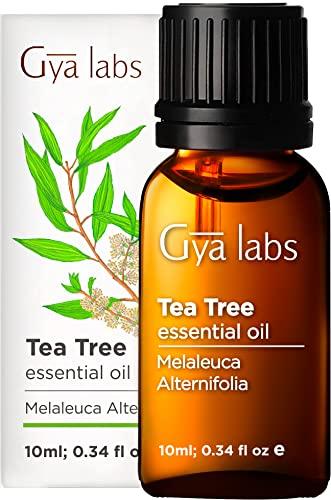 Gya Labs Tea Tree Essential Oil