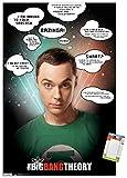 Trends International Póster de pared de The Big Bang Theory-Quotes, 56,8 x 86,3 cm, póster premium y paquete de montaje
