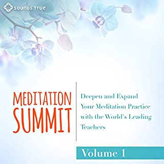 The Meditation Summit: Volume 1 cover art