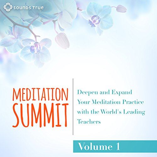 The Meditation Summit: Volume 1     Deepen and Expand Your Meditation Practice with the World's Leading Teachers              By:                                                                                                                                 Reginald A. Ray Ph.D.,                                                                                        Snatam Kaur,                                                                                        Sharon Salzberg,                   and others                          Narrated by:                                                                                                                                 Reginald A. Ray Ph.D.,                                                                                        Snatam Kaur,                                                                                        Sharon Salzberg,                   and others                 Length: 8 hrs and 22 mins     13 ratings     Overall 4.5