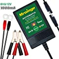Mroinge Automotive Trickle Battery Charger Maintainer 6V 12V Automatic Smart for All Lead Acid Batteries