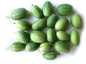 S-pone, 20 Cucamelon Seeds Vegetable Sour Gherkin Seeds Mini Watermelon Fruit for Garden