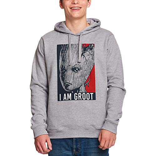 Guardians Of The Galaxy Hoodie Soy Groot Hooded Marvel Gray - L