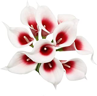 Angel Isabella, LLC 20pc Set of Keepsake Artificial Real Touch Calla Lily with Small Bloom Perfect for Making Bouquet, Boutonniere,Corsage (Picasso Red)