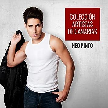 Colección Artistas de Canarias Neo Pinto
