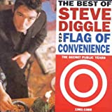 Best of Steve Diggle & Flag of Convenience: the Secret Public Years 1981-1989