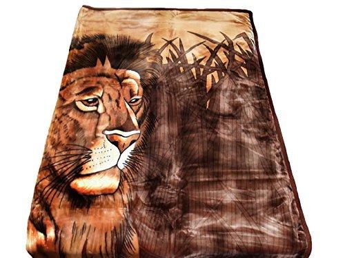 HAFIX Kuscheldecke Tagesdecke Wolldecke Überwurfdecke in 200x240cm Ruhender Löwe, für wohlige Wärme auf dem Sofa und im Bett aus 100% Polyester