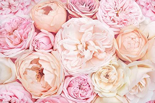DesFoli Blumenstrauß Rosen Pink Rosé Poster Kunstdruck Fotoposter P2254 Größe 30 cm x 20 cm