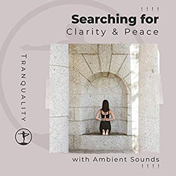 ! ! ! ! Searching for Clarity & Peace with Ambient Sounds ! ! ! !