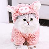Halloween Cat Costume, Cozy Doggie Coat with Adorable Pig Pattern, Kitty Small Dog Winter Apparel, Kitten Puppy Dog Outfits with Button, Teddy Chihuahua Dog Cotton Jacket