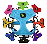 EcoBark Maximum Comfort small dog harness