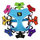 EcoBark Classic Dog Harness Soft Gentle No Pull & No Choke Dog Harnesses Double Padded Halter Ultra Cushioned Walking Breathable Mesh Dog Vest for Puppies XS Small Medium Large Dogs in 10 Colors