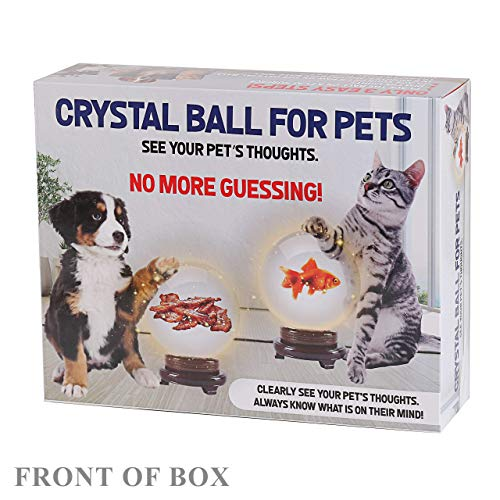 FOLE Prank Gift Box Pet Crystal Ball