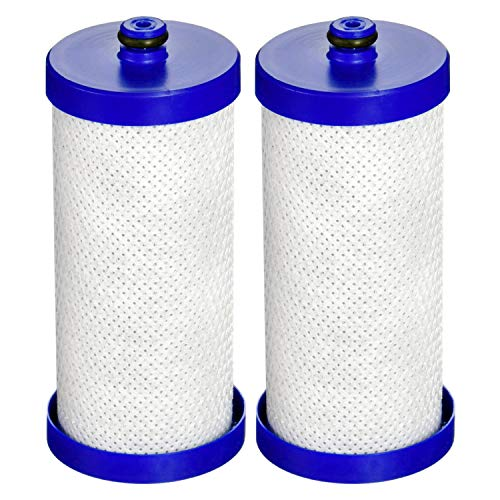 Waterdrop WFCB Refrigerator Water Filter Replacement for WF1CB, WFCB, RG100, NGRG2000, WF284, 9910, 469906, 469910, 2 filters