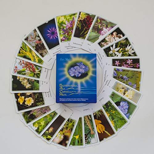 Preisvergleich Produktbild Bachblüten-Karten: Karten - Deutsch. Blüten als Chance und Hilfe: Kartenset mit allen 39 Bachblütenfotos