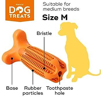 Natural Dog Treats Brosse à Dents et Dentifrice Kit pour Chien, Soin Oral Nettoyage des Dents, 100% Naturel Jouet à Mâcher, Taille Moyen