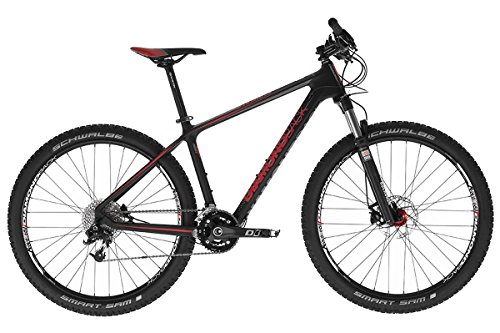DiamondBack MTB Lumis 2.0 Mountainbike XC Fahrrad 17
